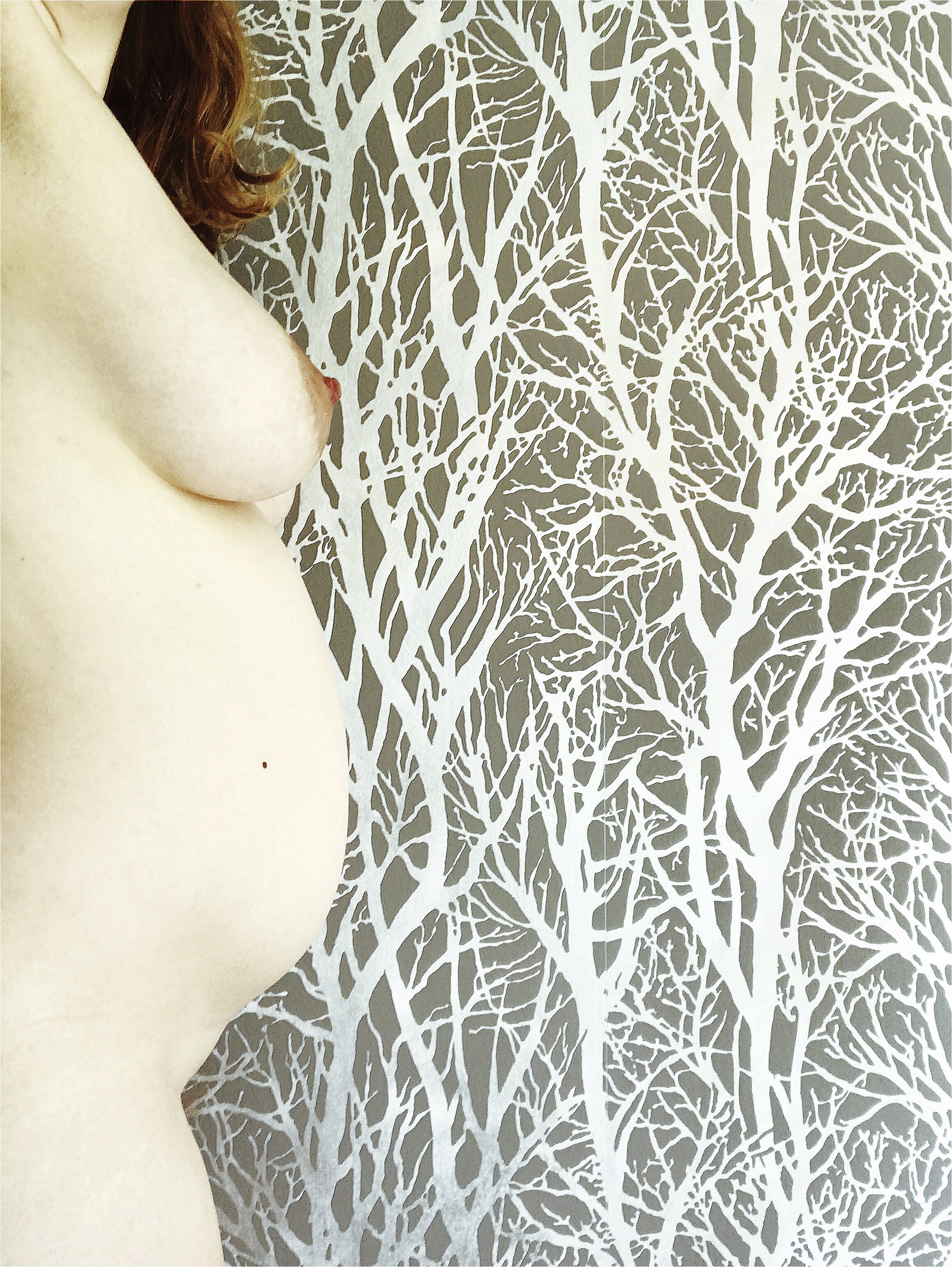 A profile of my 24 week pregnant belly and breasts, on the left of the photo that is otherwise filled with grey wallpaper with a white tree pattern on it