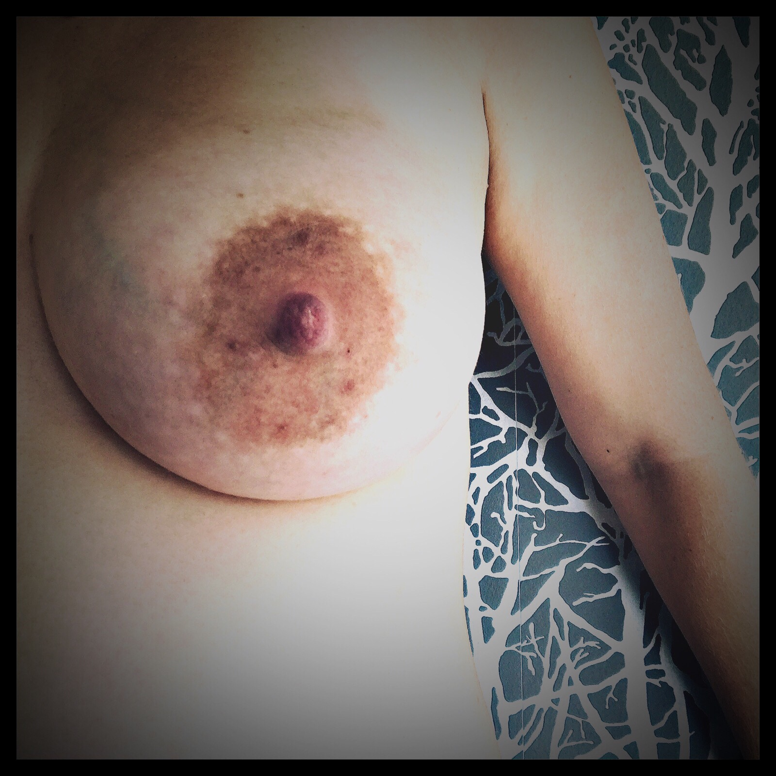 An image of my left breast with the focus on the large nipple