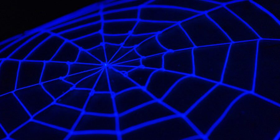 A glowing purple web on a black background